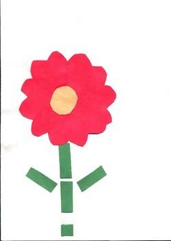 Shape Flower/Spanish