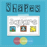 Shape Sight Word Books - SQUARE