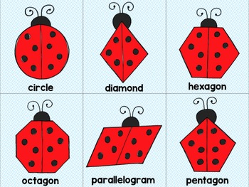 SHAPES Matching Ladybugs with Leaves