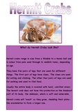 Shared Reading - Hermit Crabs