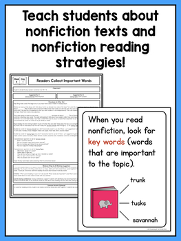 Shared Reading Lessons for Reading Workshop: First Grade Unit 6