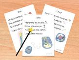Shared Reading Poems - Spanish Vowels AEIOU - Poemas de le