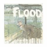 Shared Reading Program - Flood by Jackie French