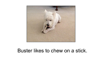 "Shared Reading with ""Meet Buster"" (Level C and E versions of the story included)"