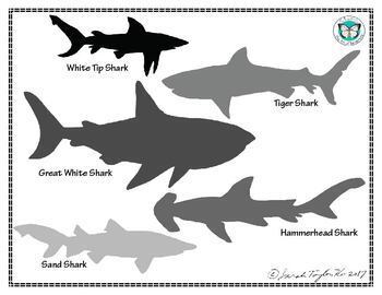 Shark Bait Greater Than Less Than Comparing Numbers Game