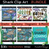 Shark Clip Art BUNDLE {PaezArtDesign}