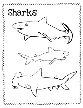 Shark Coloring Pages & Printables | Education.com | 350x270