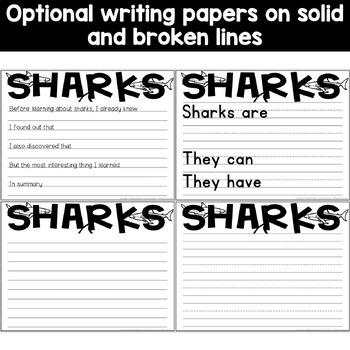 Shark Craft Activity