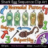 Shark Egg Sequence Clip Art | Movable Pieces {PaezArtDesign}