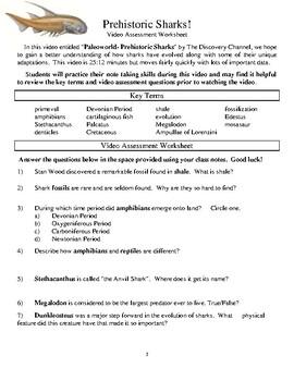 Shark Evolution!  Take a journey through the Carboniferous Period