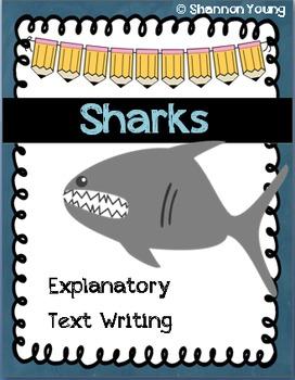Shark Explanatory Text Writing