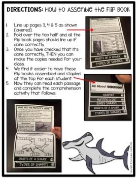 Sharks Flip Book {Reading Comprehension & Craft}