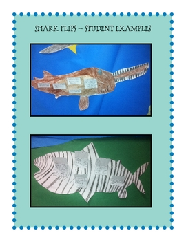 Shark Flips and Stepbooks
