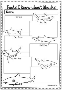 Shark Week Information Pack