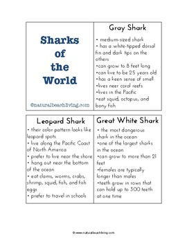 Shark Information Cards