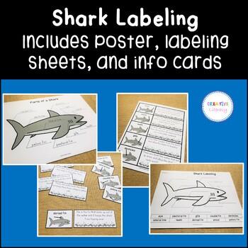 Shark Labeling Activities