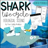 Shark Life Cycle | Biological Science Activities and Printables