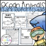 Ocean Animal Research / Report / Shark
