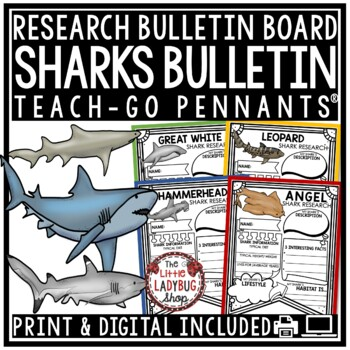 Sharks Research Project & Rubric