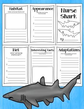 Shark Research Books