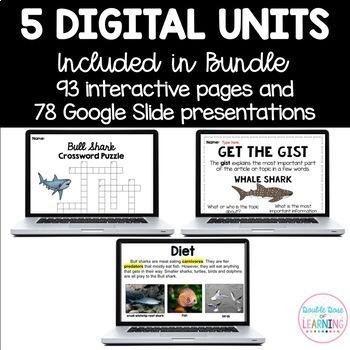 Shark Research Digital Units for Google BUNDLE (5 different sharks!)