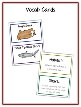 Shark Research Project - 10 Types, Vocab Cards, Packet, Book  + More!