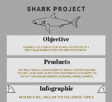 Shark Species Research and Fin Project