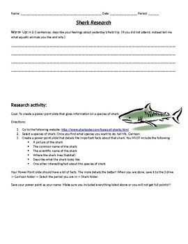 Shark Taxonomy Research