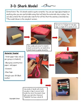 Shark Tracking STEAM and STEM Project Activities