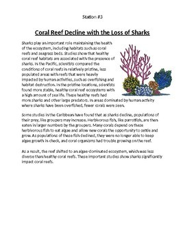 Shark Trophic Cascade Investigation