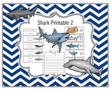 Shark Types Printable 2
