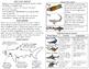 Sharks minibook and craftivity: Adaptations, life cycle