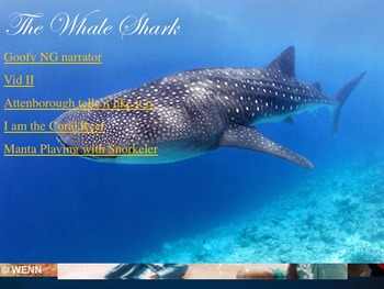 Shark of the Day Warmup Activity