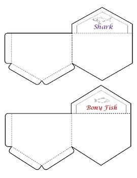 Shark vs. Bony Fish