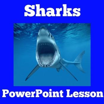 Sharks Unit | Sharks PowerPoint | Sharks Activity | Shark Week