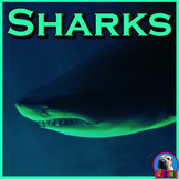 Sharks - PowerPoint & Activities