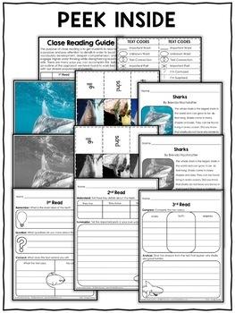 Shark Close Reading Passage Activities