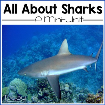 Shark Anatomy Teaching Resources | Teachers Pay Teachers