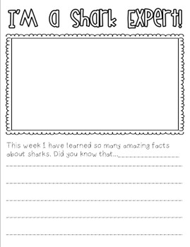 Sharks- A Mini Unit for Primary Learners