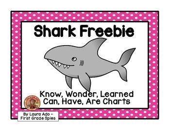 Shark KWL Freebie