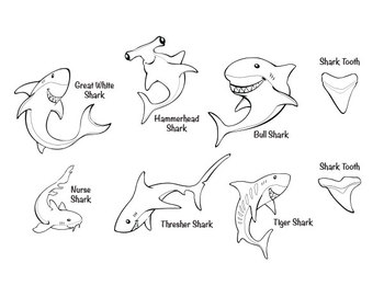 Sharks! Clipart Package