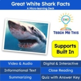 Sharks Informational Text Reading Passage and Activities
