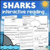 All About SHARKS Interactive Reading Comprehension Activity