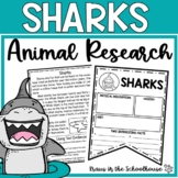 Sharks: Let's Read & Write About Shark Activities