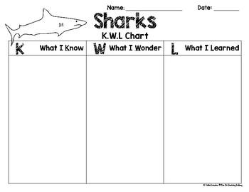 Sharks Mini-Unit