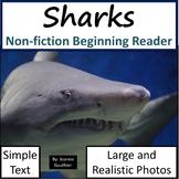 Sharks: Non-fiction animal e-book for beginning readers