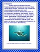 Sharks: Nonfiction Text, Comprension Sheets and Informational Writing