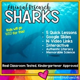 Sharks .. Ocean Animal Research Mixed w/ Authentic Literacy!