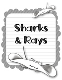 Sharks & Rays. Research Template Packet. Apologia Zoology 2. Lesson 7