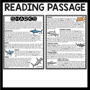 Types of Sharks Reading Comprehension Worksheet